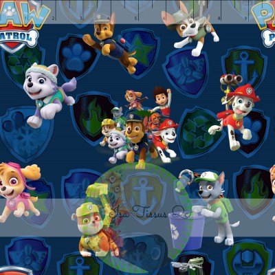 DBP / Double Brush Poly / Licence / Pat patrouille, Paw patrol, personnages, fond bleu