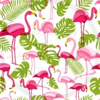 DBP / Double Brush Poly / Flamant rose, feuille verte, fond blanc